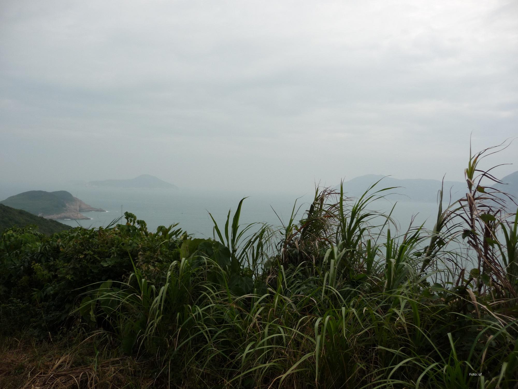 Schöner Weg Richtung Cape D'Aguilar