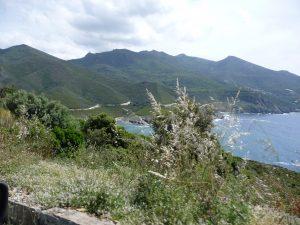 Wild und schön - willkommen auf Korsika