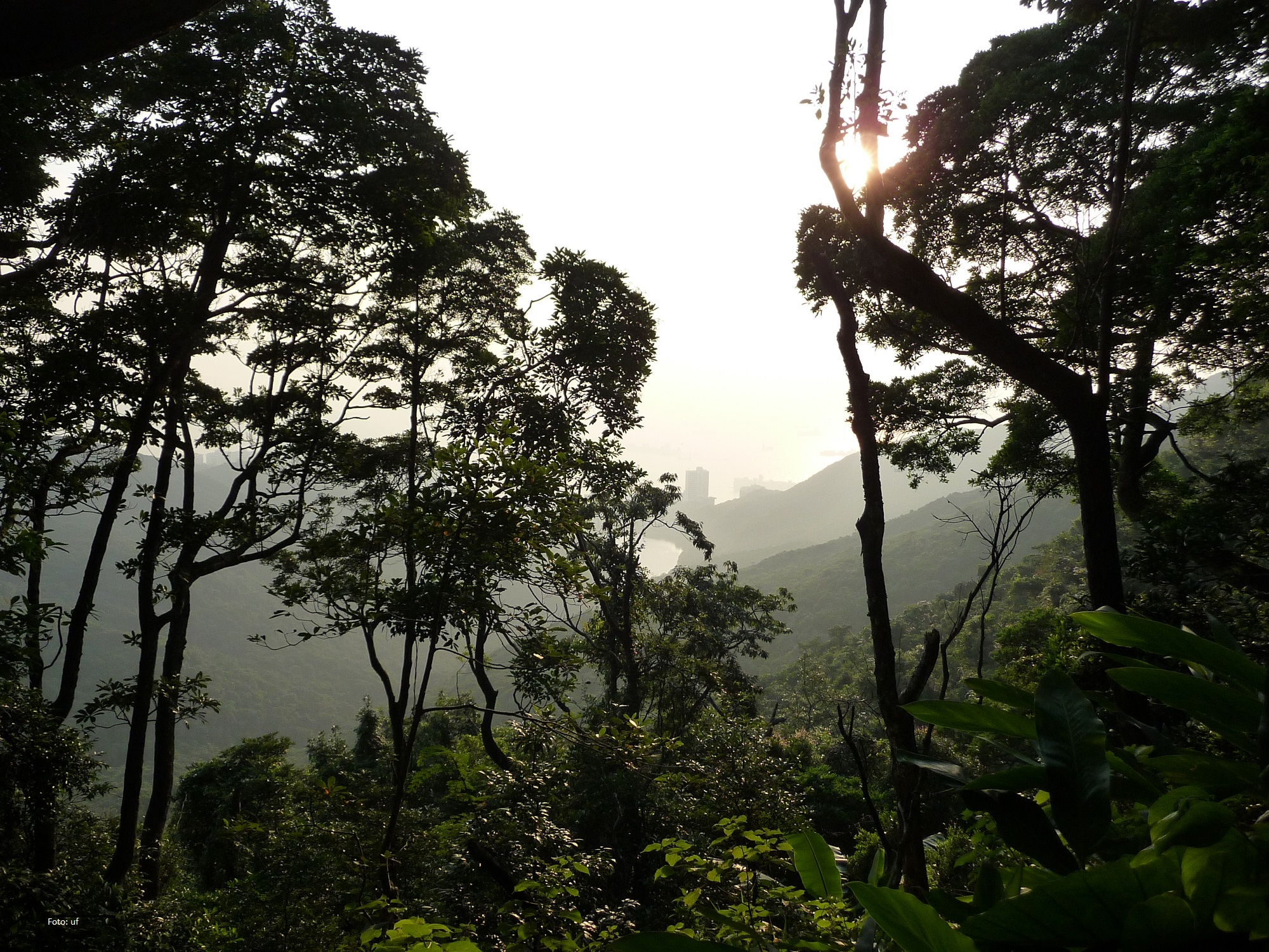 """Schöner Spaziergang auf dem """"Hausberg"""" von Hongkong"""