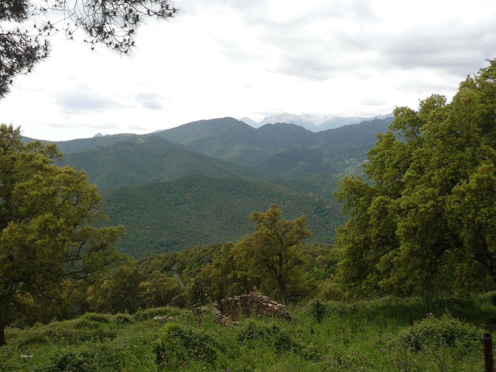 Blick Richtung Punta di a Capella