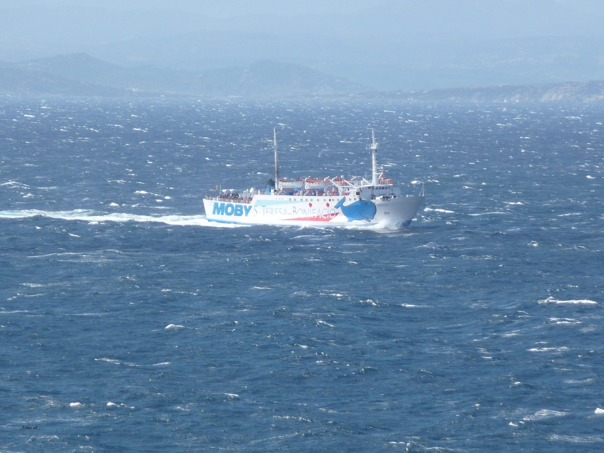 Nach Bonifacio per Fähre von Nordsardinien - ca. 1 h Fahrzeit