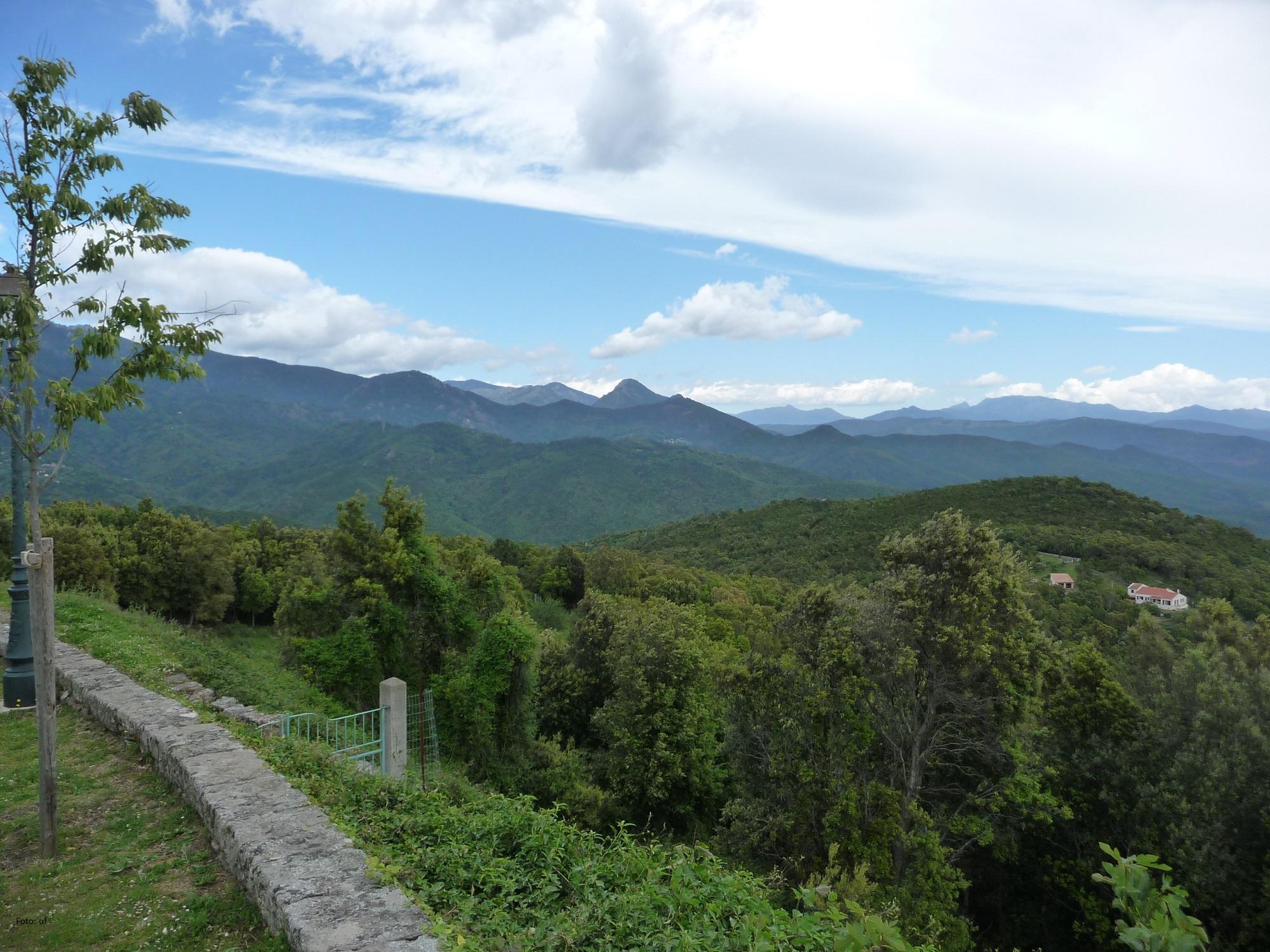 Wir sind noch immer im Hinterland von Ghisonaccia