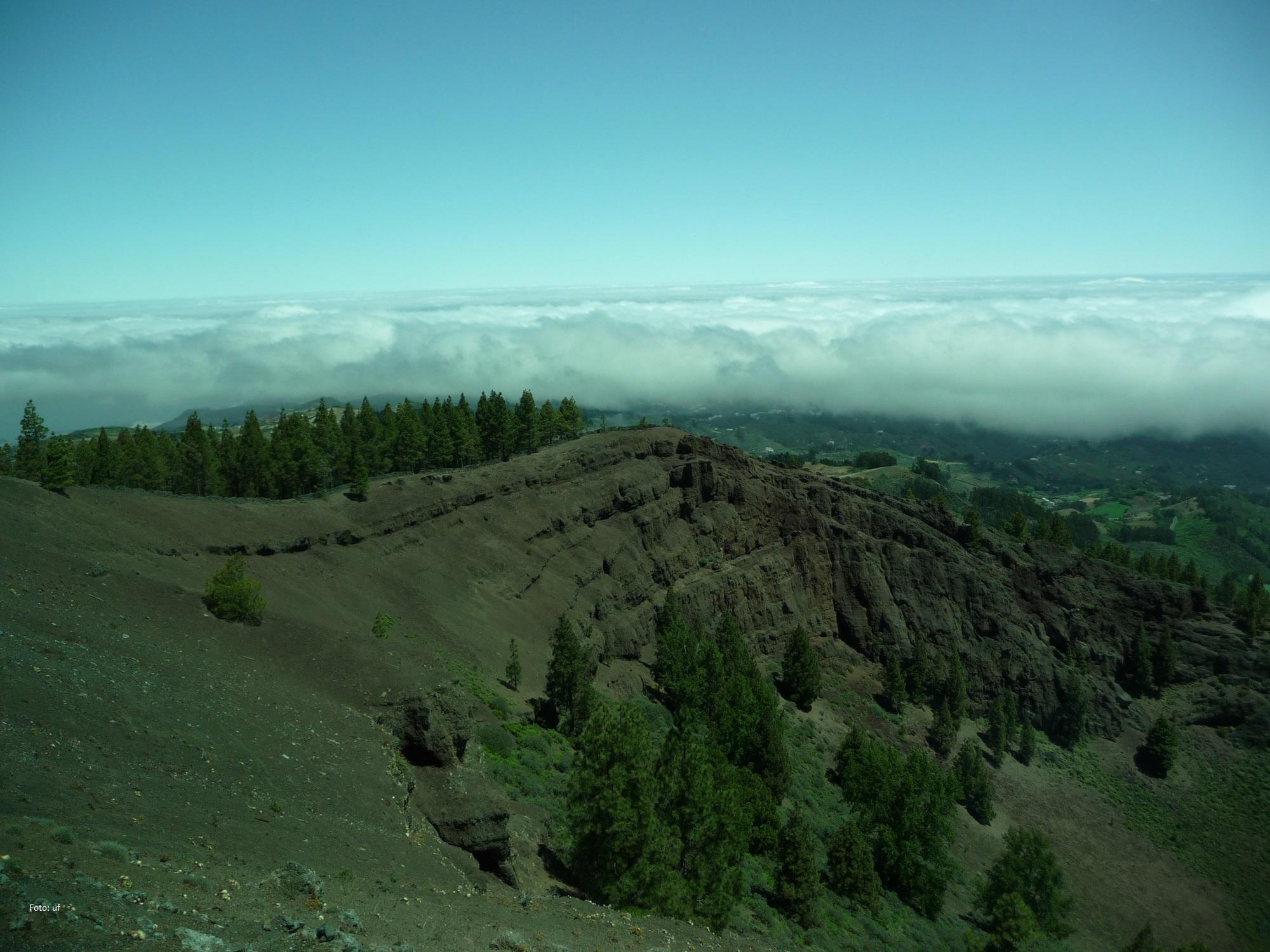 Die Feuchtigkeit der Passatwinde sind die Ursache eines grüneren Norden.