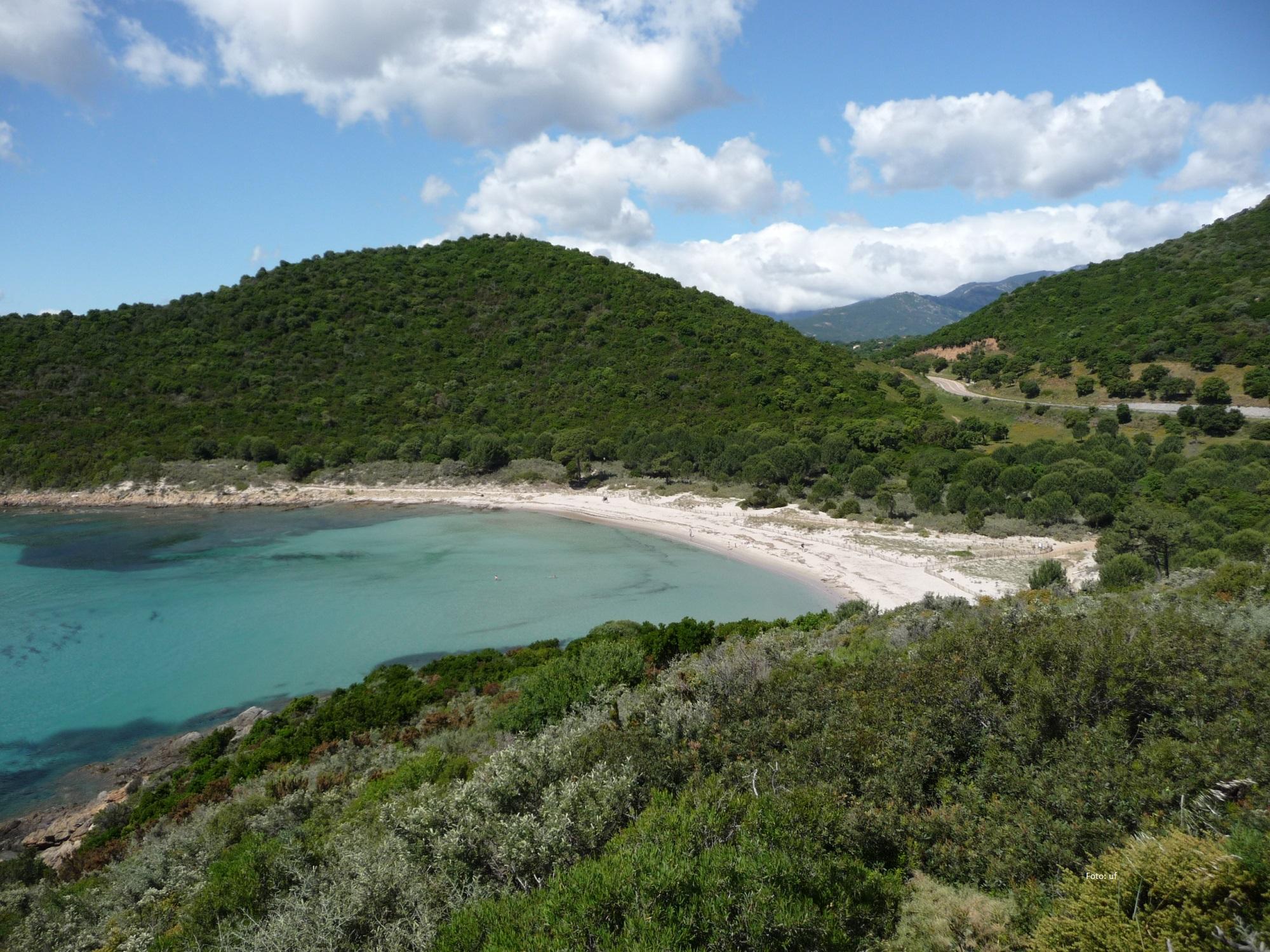 Immer wieder zu finden: herrliche Strandbuchten