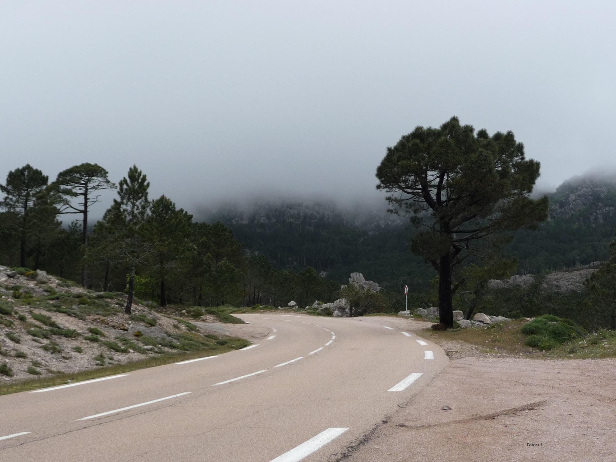 Wir sind auf dem Pass angekommen - Nebel und 7 Grad