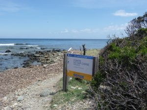 Cap Corse = Naturschutzgebiet