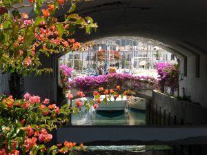 """Schön angelegte Brücken und Kanäle verziert mit herrlichen Blumenranken in """"Klein-Venedig"""" in Puerto de Mogàn"""