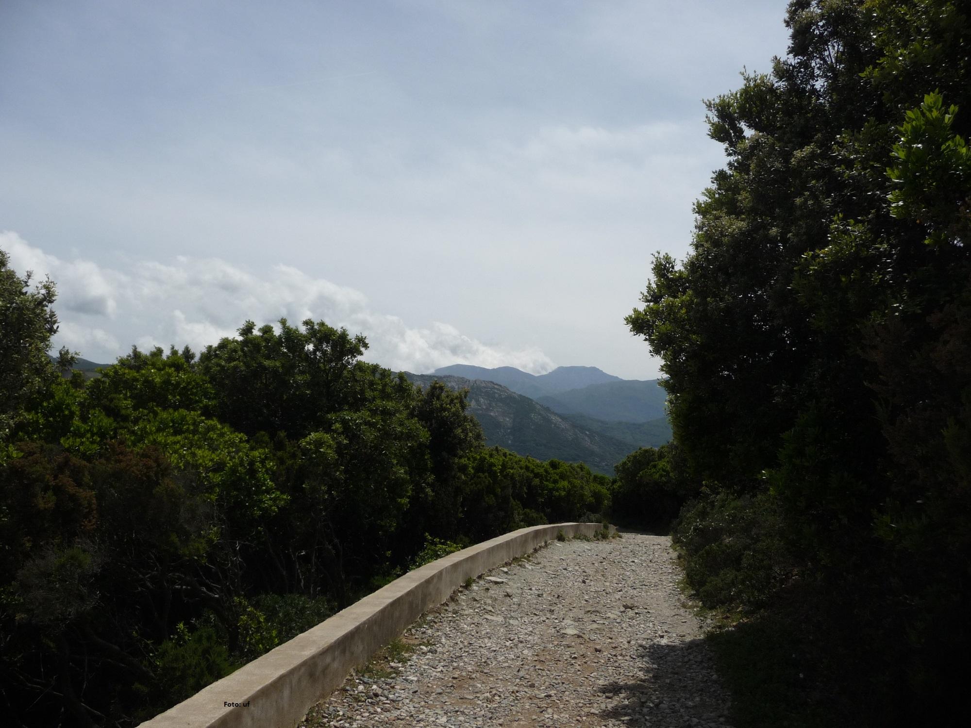 Idyllische Wege und schöne Landschaften