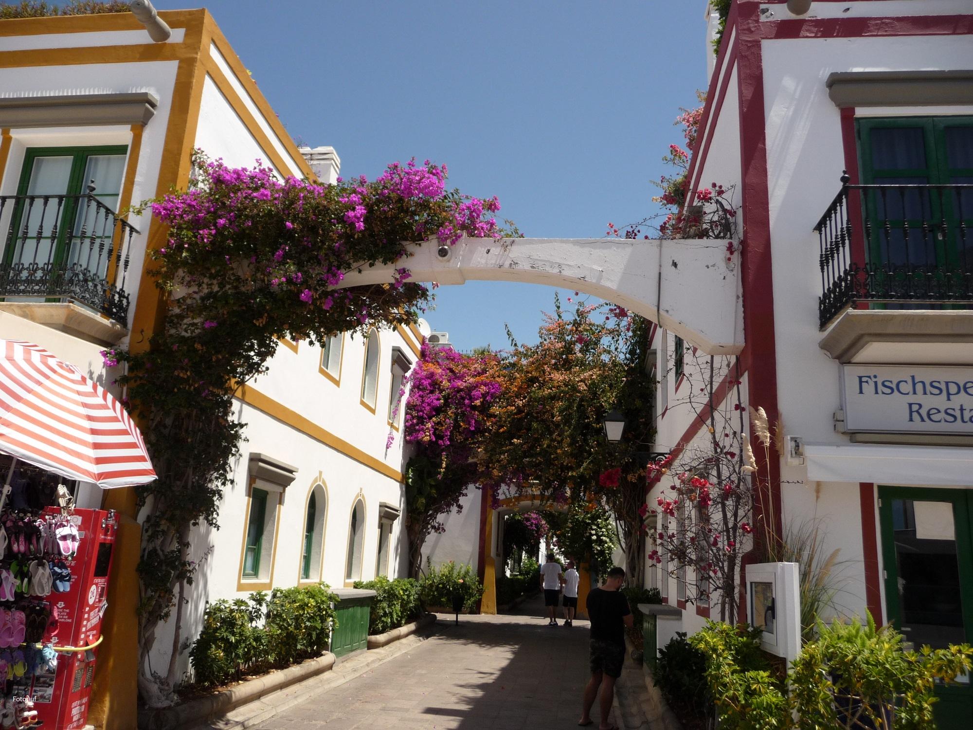 """In diesen hübschen Appartementhäusern von """"Klein-Venedig"""" können Sie sich über die Reiseveranstalter einbuchen."""