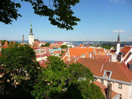 Blick über die Dächer der Unterstadt Tallins